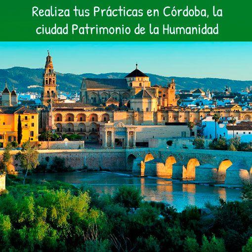 Practicas en empresas Cordoba curso intensivo de español